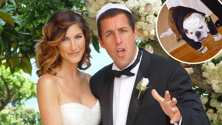 Adam Sandler's Dog Was Best Man At His Wedding