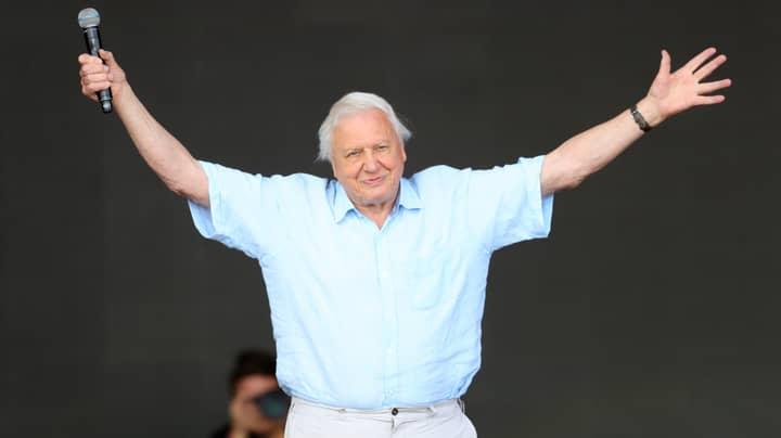 Sir David Attenborough Receives Lifetime Achievement Award
