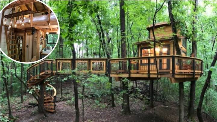 Man Builds Amazing Treehouse That Is Available On Airbnb