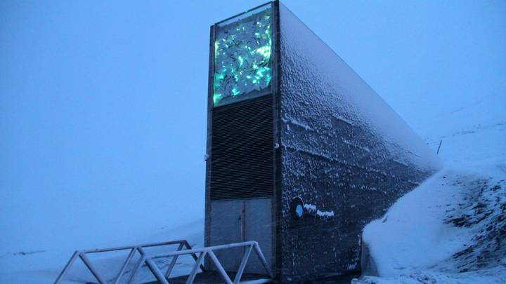 Doomsday Vault To Be Constructed On Remote Island To Preserve Humankind's Best Music