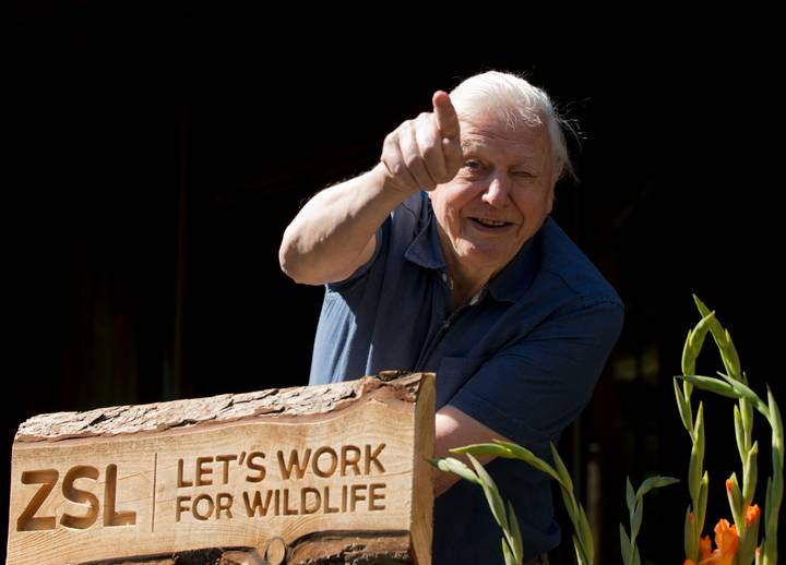 Sir David Attenborough Reminds Zoo Visitors To Be More Respectful