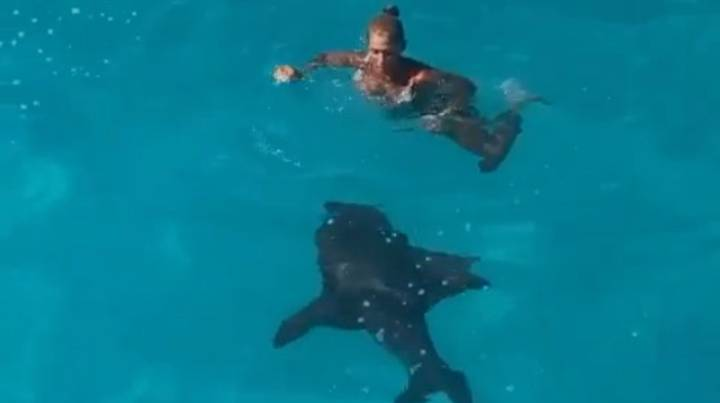 Woman Plunges Off Slide Into Sea Before Spotting Shark Right Beside Her