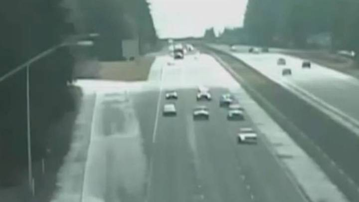 Footage Shows Police In High Speed Chase With Man 'Teaching Dog To Drive'