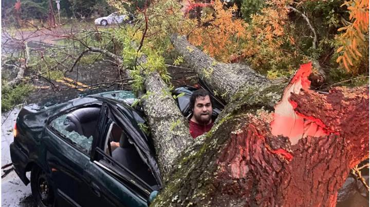 Man Narrowly Avoids Death After Tree Struck By Lightning Crashes Into His Car