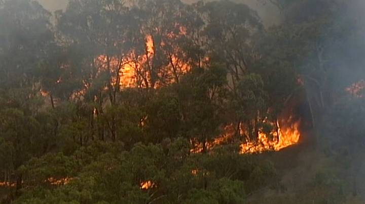 Maps Show How Much Of Europe Would Be Affected By Australian Bush Fires