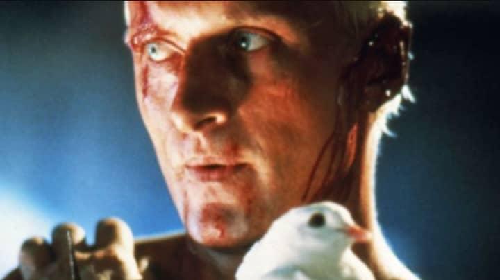 Blade Runner Actor Rutger Hauer Has Died
