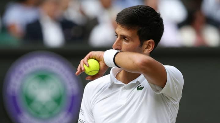 Novak Djokovic Explains Why He Eats Grass After Winning Wimbledon
