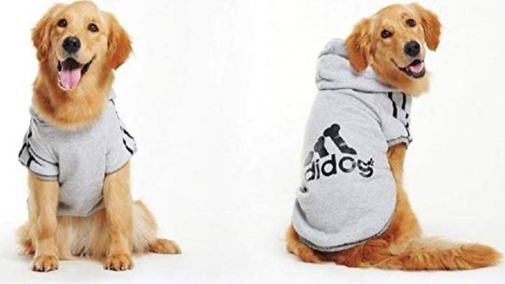 Amazon Is Selling Adidas-Inspired Outfits For Your Dog