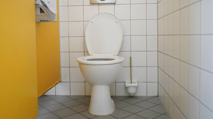 Man Sacked For Pooing In Front Of Colleagues Loses Unfair Dismissal Tribunal