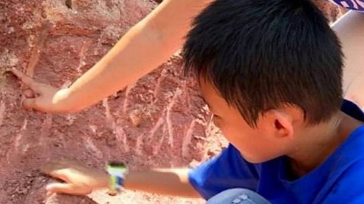 Boy Finds 11 Dinosaur Eggs In China