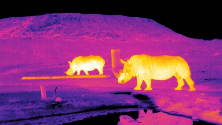 Poachers Could Be Stopped Using NASA Night-Vision Drones