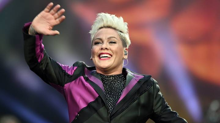 Pink Says Robin Williams Improvised Stand Up For Her When She Lost At The Grammys