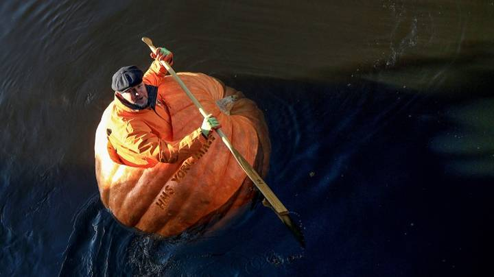 Man Sails Down The River Ouse In York In A Pumpkin