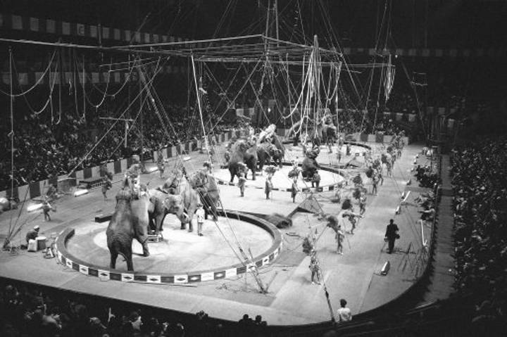 Declining Attendances And High Operating Costs Bring 146-Year-Old Circus To An End