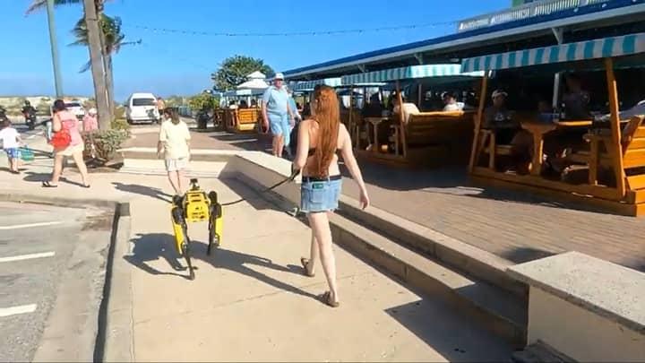 Boston Dynamics Robot Dog Spotted Taking A Walk Along Florida Beachfront