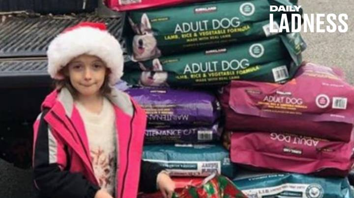 Eight-Year-Old Girl Donates 600lbs Of Pet Food To Animal Shelter