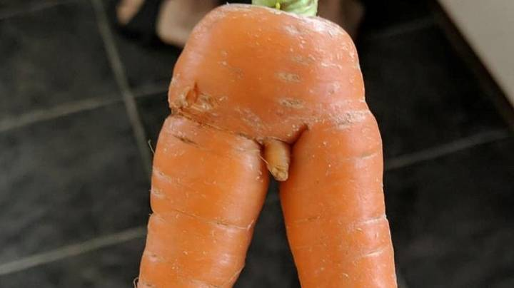 Man Says Carrot Is 'Too Rude' To Give To His Kids