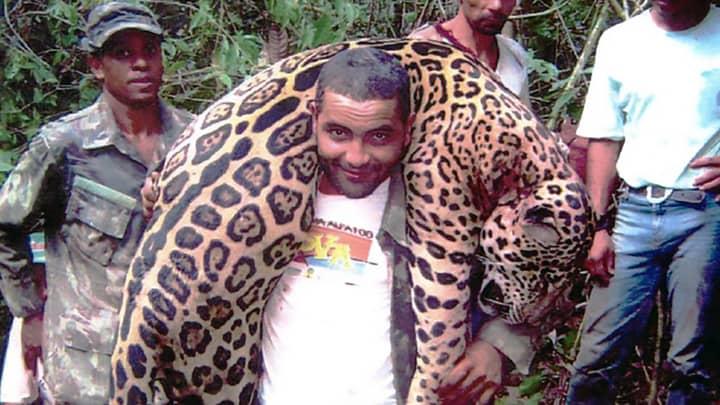 Dentist Arrested After 'Illegally Killing 1,000 Protected Jaguars'