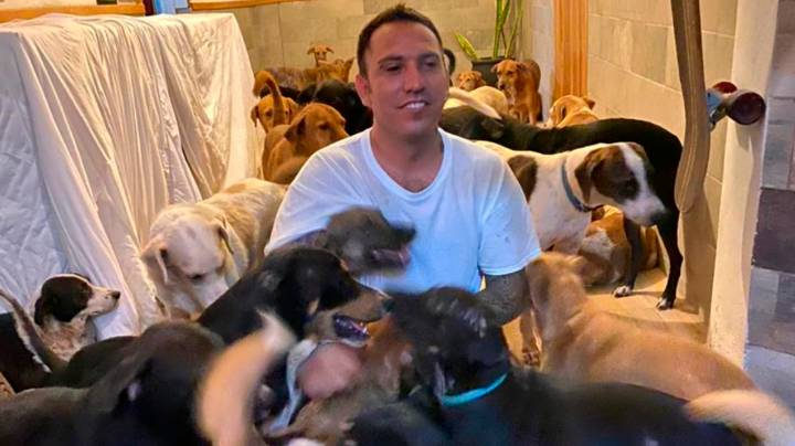 Man Shelters 300 Dogs In His Home From Hurricane In Mexico