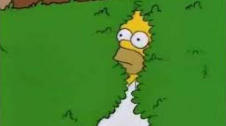 Homer Simpson Uses His Infamous Bush GIF In Latest Episode Of The Simpsons
