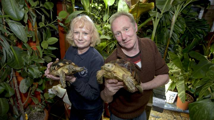 Couple Complain They're Kept Awake By Sounds Of Mating Animals In £22,000 Home Zoo