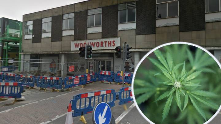 Police Find Thousands Of Cannabis Plants Inside Abandoned Woolworths Store