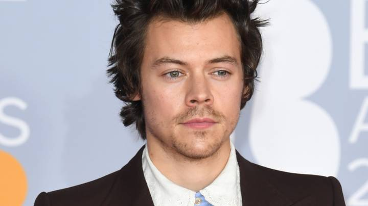 Harry Styles Trolls 'Bring Back Manly Men' Comments With New Photo