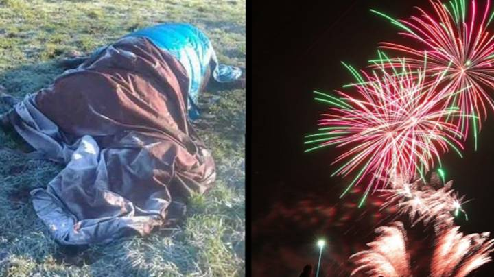 Horse Dies From A 'Twisted Gut' After Being Scared By Fireworks
