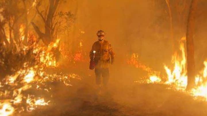 These Statistics Show Just How Horrible Australia's Bushfire Season Has Been So Far