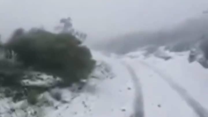 US Storms Bring Rare Snowfall To Hawaii