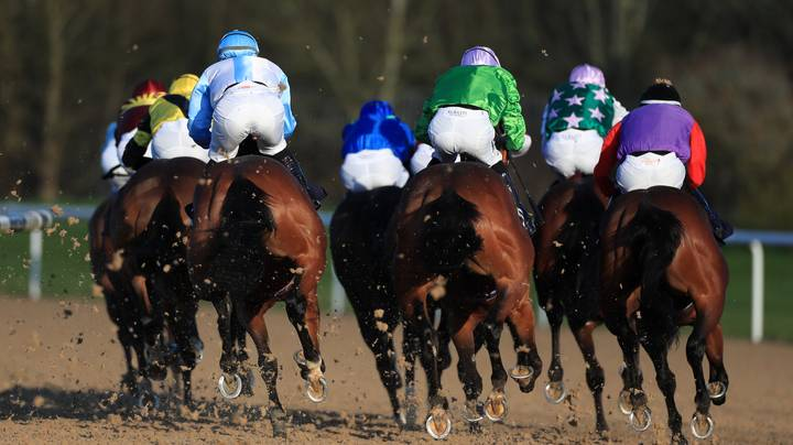 Racing Fans In Hysterics At Horse Called 'Perfect Fanny'