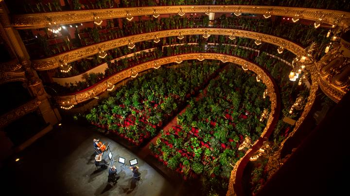 Barcelona's Opera House Hosts First Event In Three Months In Front Of 2,295 Indoor Plants