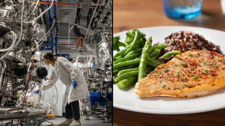 World's First Lab-Grown Meat Factory Has Just Opened Up