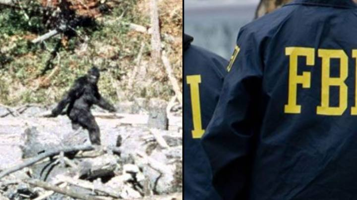 FBI Releases New Information On Bigfoot