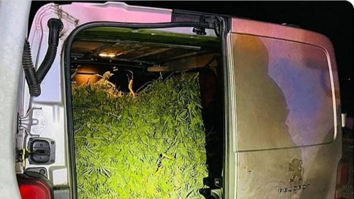 Police Find Estimated £250,000 Worth Of Cannabis On The M1
