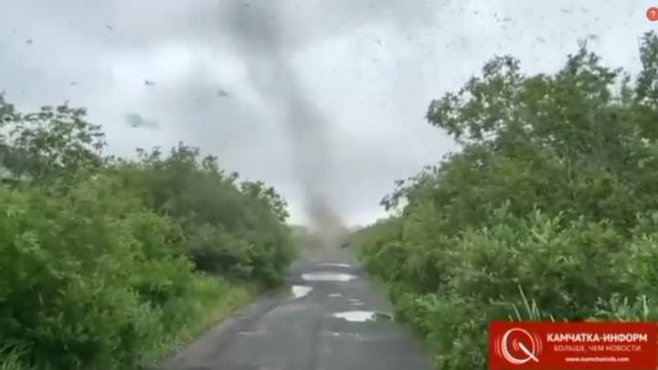 Russian Driver Captures Huge 'Tornado' Of Swarming Mosquitoes