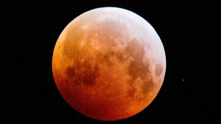 Rare 'Super Blood Wolf Moon' Brightens Up Monday Morning