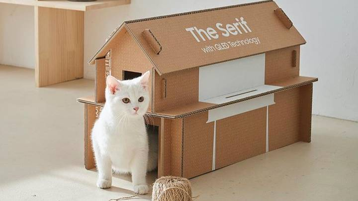 ​Samsung's New Eco-Friendly TV Boxes Can Be Turned Into Cat Homes