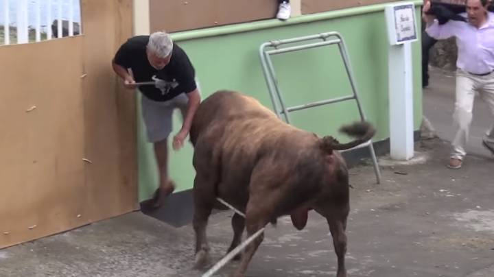 This Is A Decent Reason Why You Should Never Be Near An Angry Bull