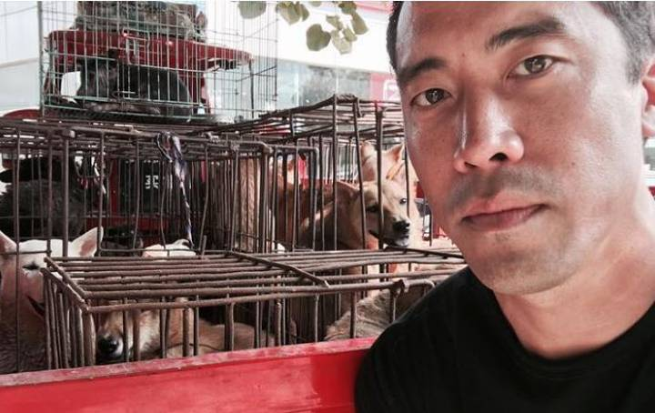 Animal Welfare Activist Saves 1000 Dogs From Yulin Dog Meat Festival