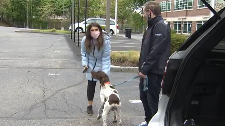 Reporter Covering Story Of Dognapping Finds The Stolen Dog