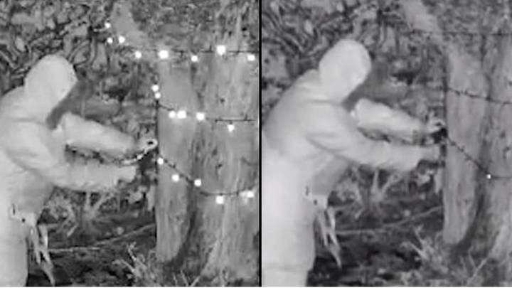 Old Woman Sneaks Into Neighbours' Garden And Cuts Down Christmas Lights