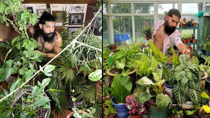 Dad Spends £6,000 Turning House Into Indoor Jungle With 2,000 Plants