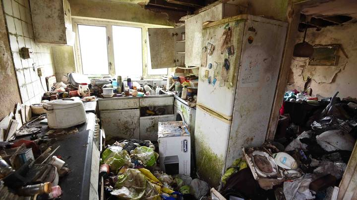 Disgusting Hoarder House Riddled With Rats Transformed Into 'Absolute Palace'