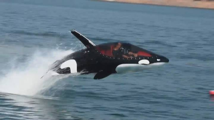 Incredible Killer Whale Submarine To Go Under Auction In The Netherlands