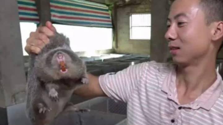 Images Reveal What A Wuhan 'Wet Market' Looks Like Amid Coronavirus Outbreak