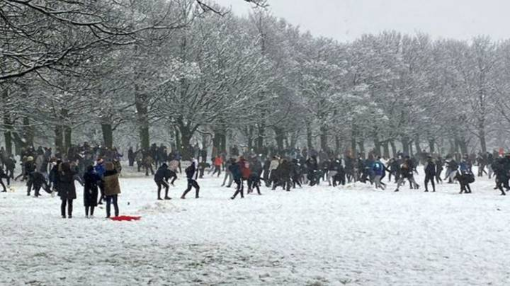 Huge Snowball Fight Breaks Out In Park As Up To 200 People Gather Despite Lockdown Rules
