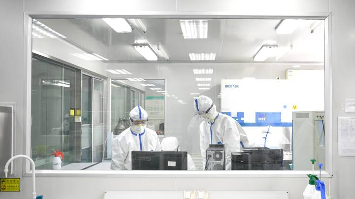 WHO Investigator Says There's No Evidence Pandemic Started In Lab