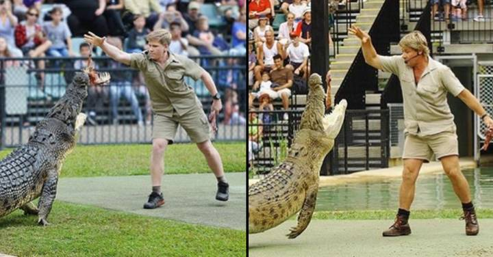 Steve Irwin's Son Feeds Same Crocodile At Same Place As His Dad 15 Years Apart