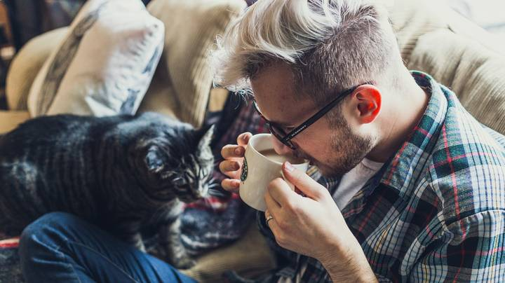 Women Are Less Likely To Swipe Right On Male Profiles With Cat Pictures